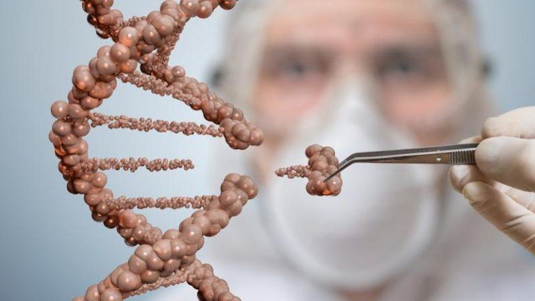 WordPress DNA open source