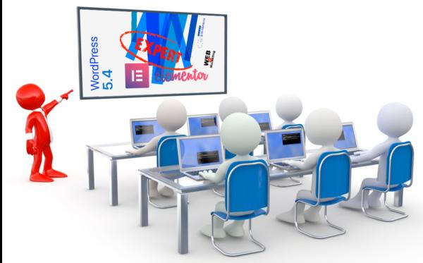 web4marketing elementor expert