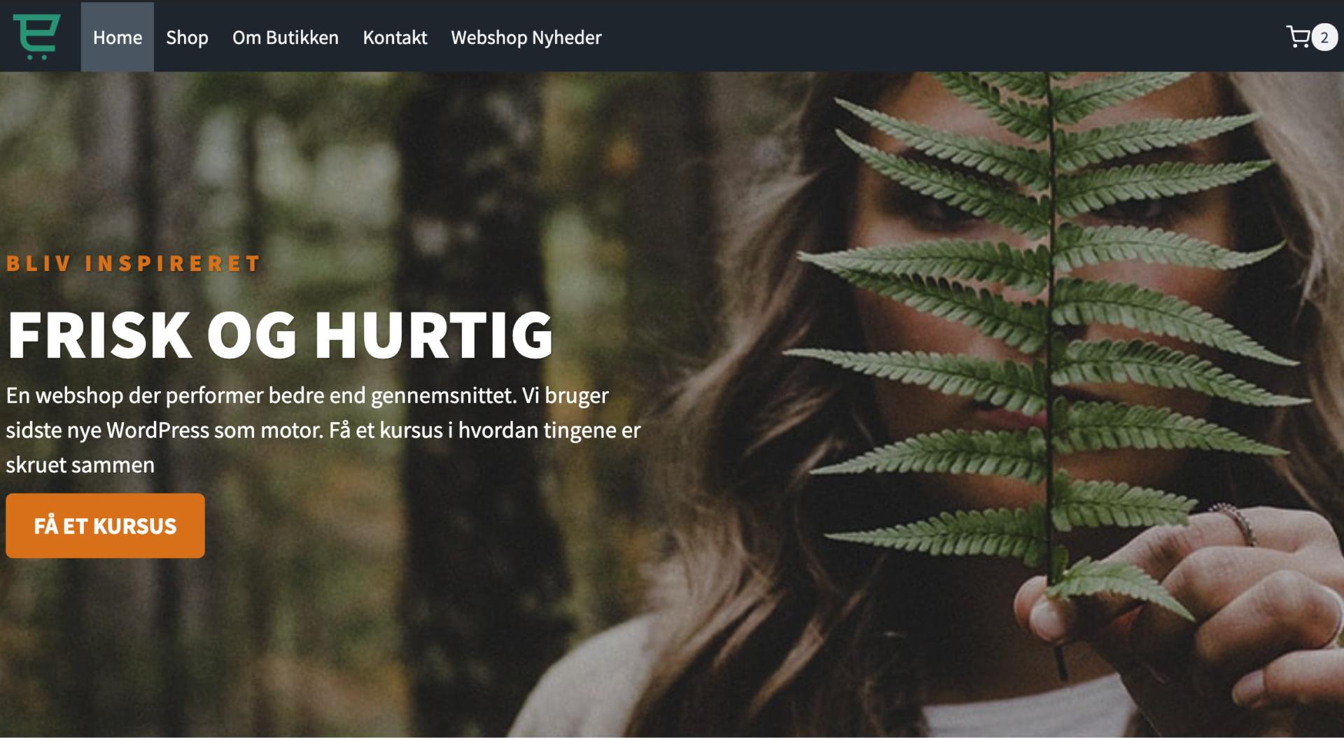 gutenberg hjemmesider