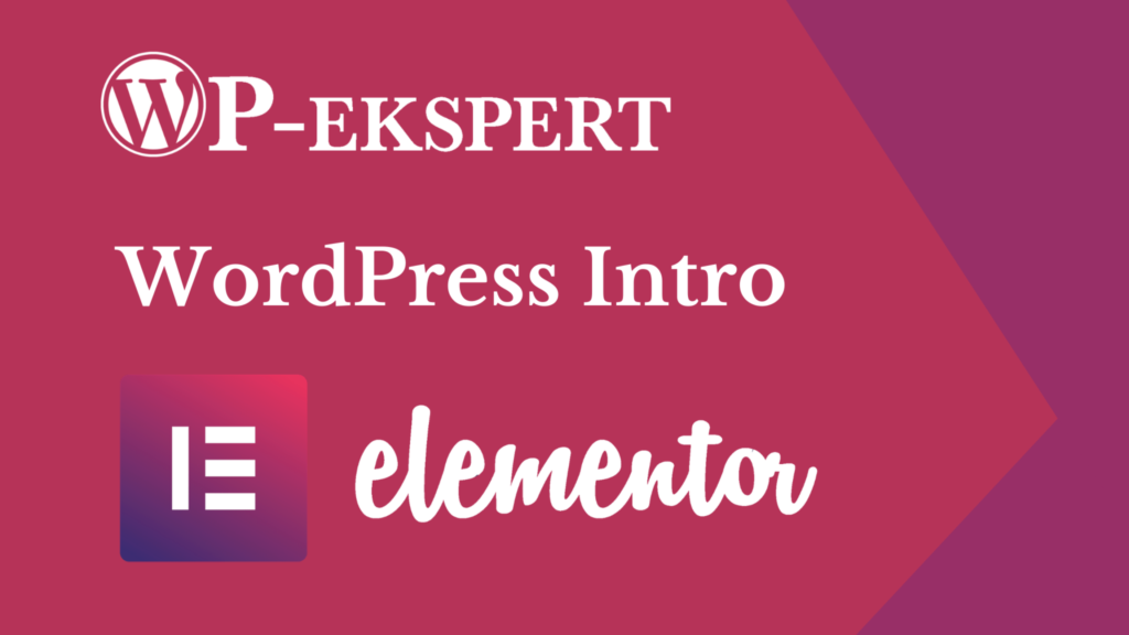 WP ekspertens WordPress kurser